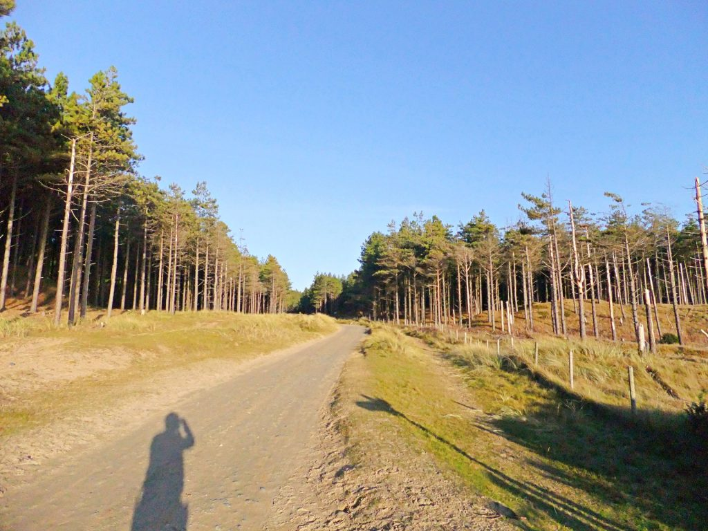 Bikequest Nature Challenge Coed Niwbrch - Newborough Forest Mountain Biking